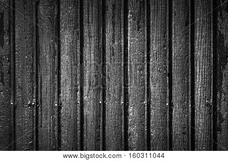 charred wood texture with knots and cracks for background