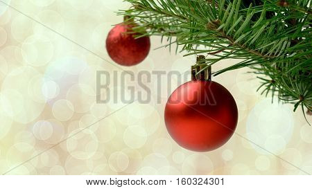Christmas tree branch with red balls. Christmas greeting background with fir branch and red ornaments. Christmas decoration with bauble hanging. Copy space.