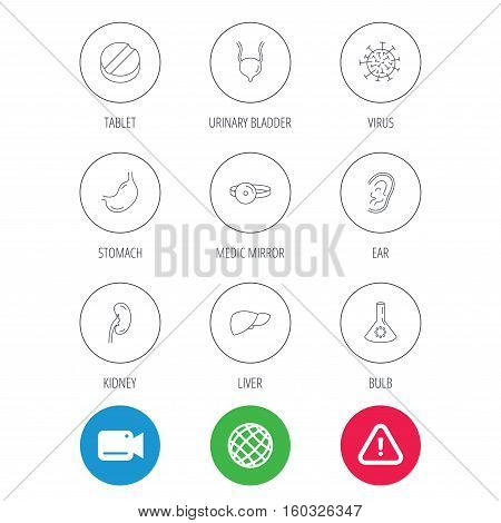Virus, tablet and stomach organ icons. Liver, kidney and urinary bladder linear signs. Medic mirror, ear and lab bulb flat line icons. Video cam, hazard attention and internet globe icons. Vector