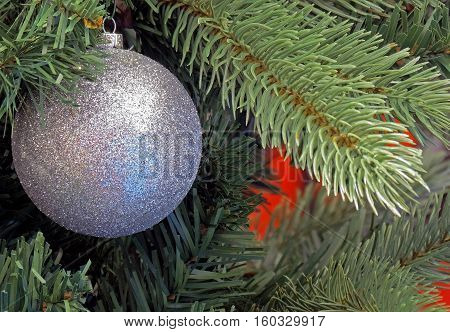 Christmas Ornament on a Christmas Tree (main image item off-set for caption insertion).