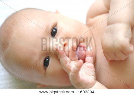 Infant Baby Portrait