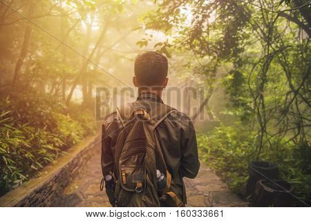 Man Walking In Forest With Mist Nature Background, Travel Lifestyle And Survival Concept
