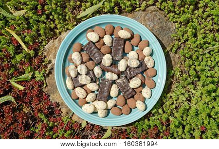 Plate Of Miscellaneous Uncovered Candies On Stone Among Sedum Acre.