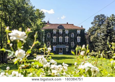 Country house with overgrown facade in garden with white flowers in Italy Europe