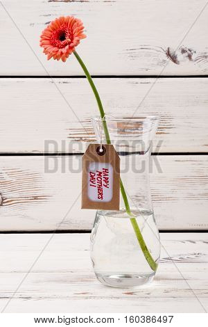 Mother's day label and gerbera. Flower in glass vase. Pay special attention to mom. Holiday congratulation with taste.