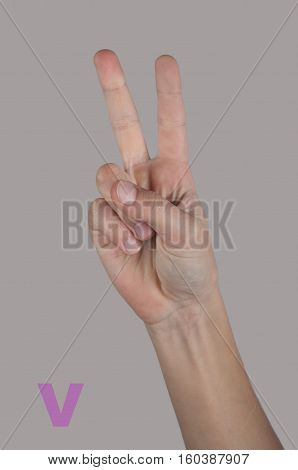 Letter V made by human hand and fingers in sign alphabet. Grey background. Victory symbol