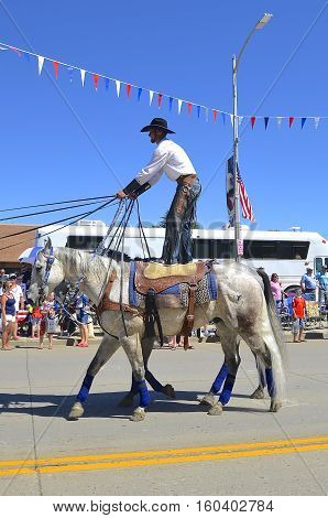 MANDAN, NORTH DAKOTA, July 3, 2016: The 4th of July Rodeo Days  3 day celebration includes the rodeo, Art in the Park, and downtown 4th parade where this unidentified cowboy simultaneously rides two horse standing up.