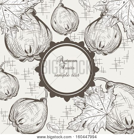 Autumn quince fruits background. Vector Old engraved illustration. Hand drawn ink technique