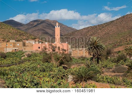 Small village with a mosque in the valley of Atlas mountains in an oasis with palm trees and many cactus plants. Blue sky with some clouds.