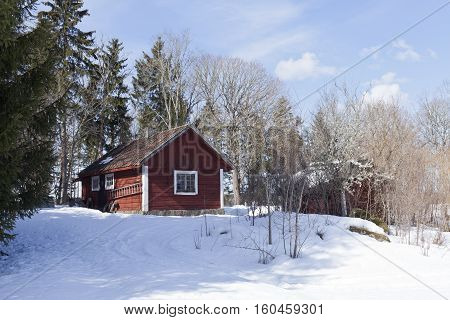 Small, red and wooden storehouse on a hill. Snow, trees and sunshine in spring.