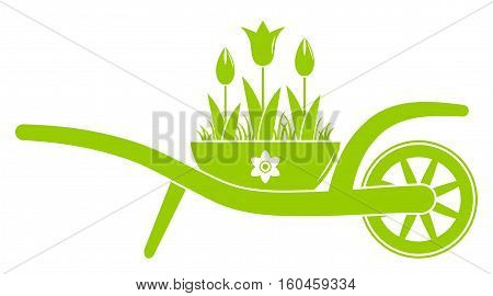 vector wheel barrow and tulips in bowl isolated on white background