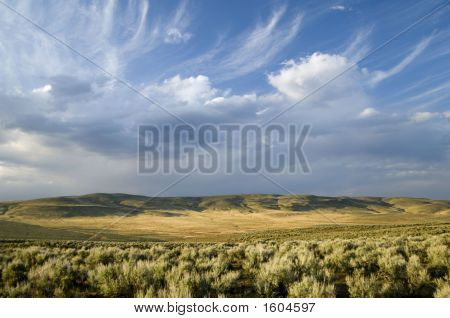 Interesting Clouds Above Sage Brush