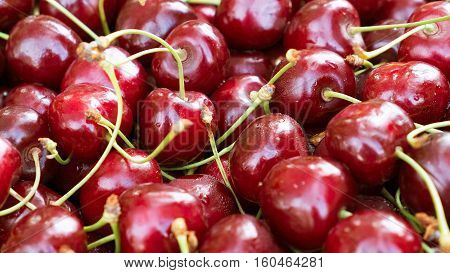 Background full cherries. Tasty red cherry. Ripe berries of sweet cherry close. Harvest of berries.