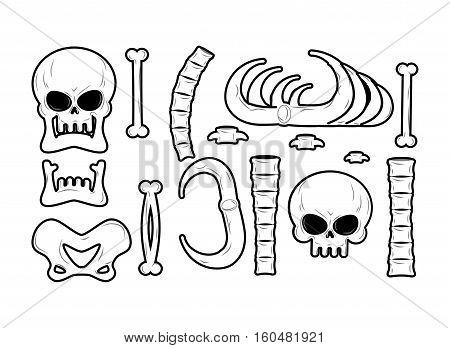 Bones Set. Anatomy Icons. Skull And Spine. Jaw And Pelvis. Ribs And Tibia. Skeleton Bone