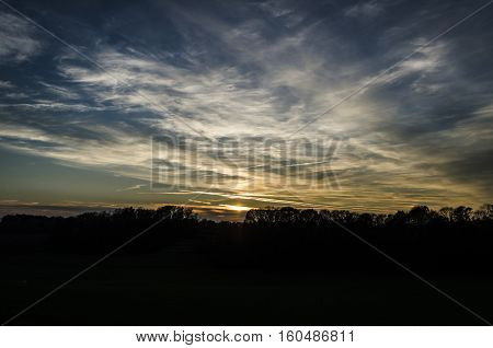 Beautiful nature sunset view with trees and blu sky