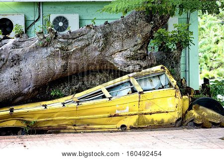 The storm blew out a heavy tree and smashed the school bus.