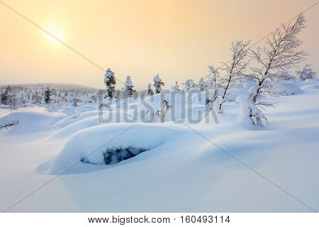 Amazing Northern Winter landscape - Sunset, snow covered trees and big snowbanks