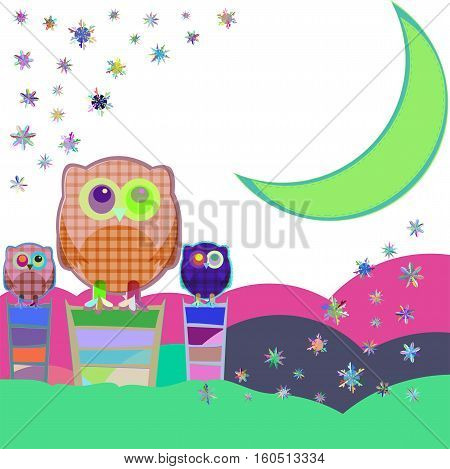Owl and moon nocturnal sky, baby boy card