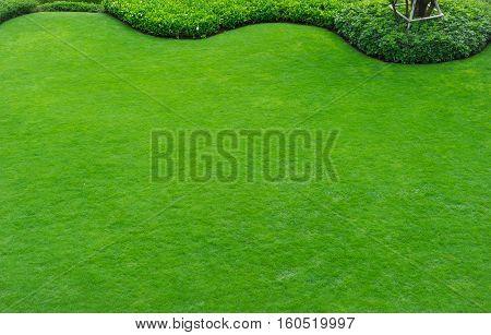 Green grass around the home and garden decor curve.