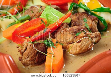 Meat stew with vegetables and sproiuts, macro close up