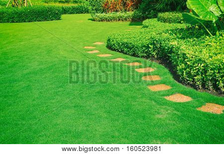 Pathways with green lawns, Landscaping in the garden,curve walkway on green grass field and flower garden