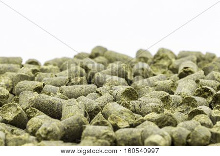 Hop in granules close up on a white background.