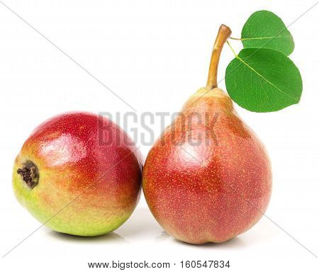 Two red pears with leaf isolated on white background.