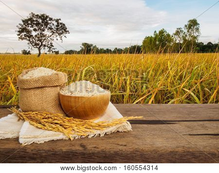 Rice in bowl and sack with spike on wooden table of gloden rice plant background with copy space