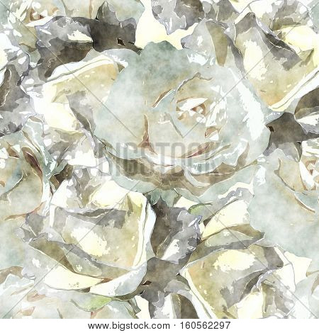 art vintage watercolor floral seamless pattern with monochrome  white roses and leaves on white background