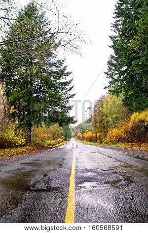 Empty road in the Pacific northwest on a cloudy rainy day