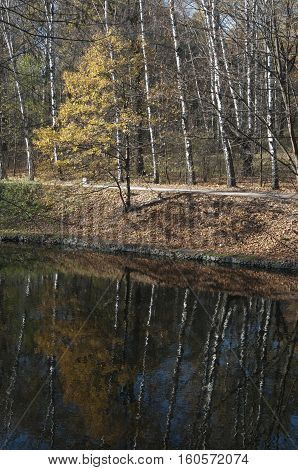 Autumn landscape with a pond in Sokolniki park Russia Moscow