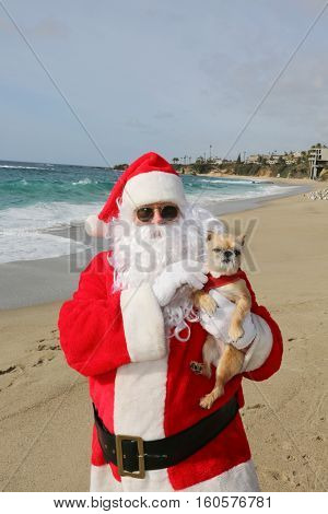 Christmas Santa Claus holds a small brown dog while at the beach outside.