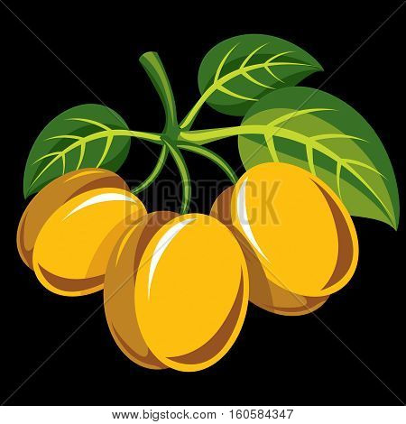 Harvesting Symbol, Single Vector Fruit Isolated. Three Yellow Organic Sour Lemons With Green Leaves,