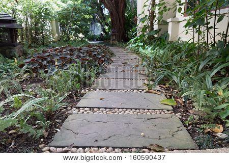 path walkway pathway sidewalk in garden park