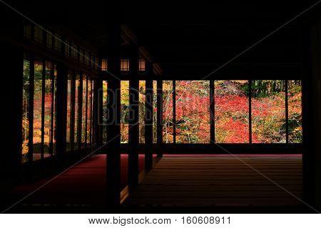 Autumn Colors At Tenju-an Temple, Kyoto