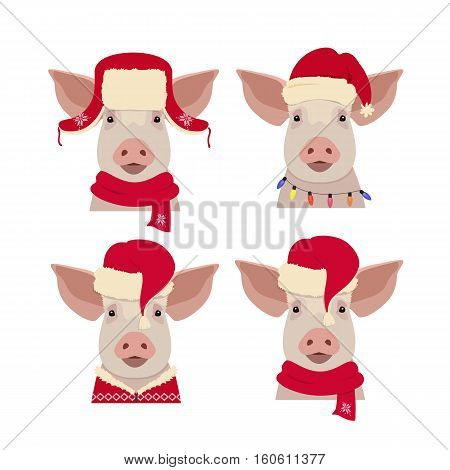 Vector pig head in winter new year, christmas clothing: red hat and scarf. Isolated Design object in flat, cartoon style. Chinese new year symbol. Poster, banner, print, advertisement element.
