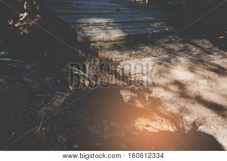 sunlight on old wood footbridge in garden park