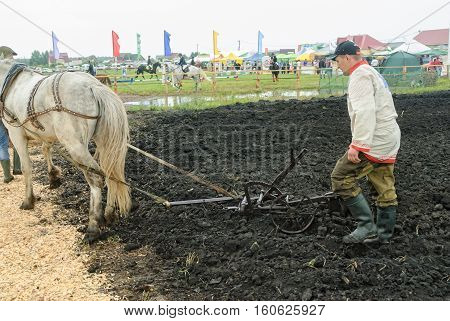 Tyumen, Russia - June 24, 2016: The 5th open championship of Russia on plowed land. Draught horse pulles plough through field. Draught horse was traditionally used in ploughing before mechanisation