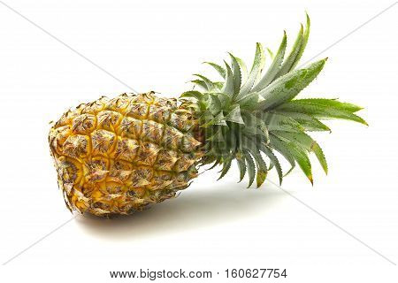 Isolated Of Pineapple Fruit On White Background