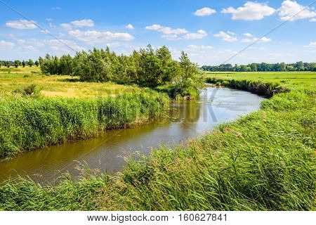 Dutch rural landscape with a narrow curved stream and reeds on the banks. Ir's a sunny day in summertime.
