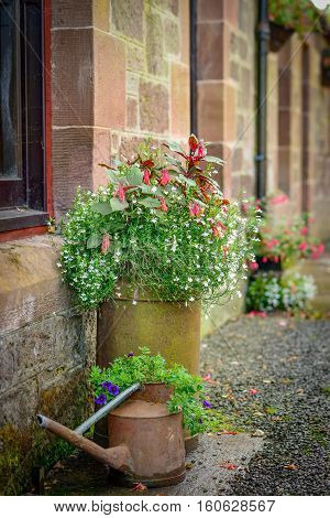 Decorative watering can and clay pot with flowers in a cottage garden.
