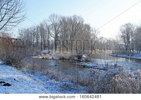 confluence of two rivers Moravka and Ostravice in winter, Czech Republic