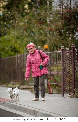 Senior woman walking her little dog on a city street; looking happy and relaxed (shallow DOF)