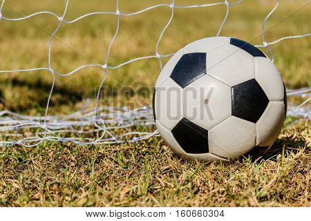 Soccer ball on the grass and nesh