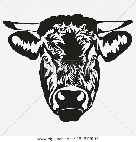 Bull head on white background, butcher Farm Animal. Meat farming emblem. Vector