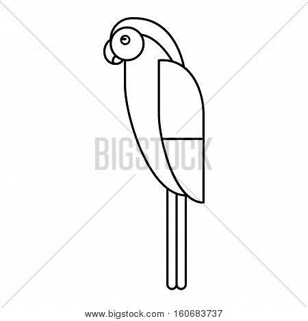 macaw parrot brazil outline vector illustration eps 10