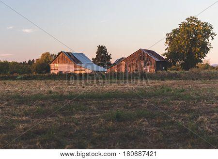 Old barn and house in rural farm land setting. Farmington, Oregon USA.