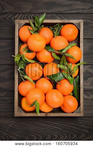 Fresh tangerine clementine with leaves in wooden tray on dark wooden background, top view, vertical.