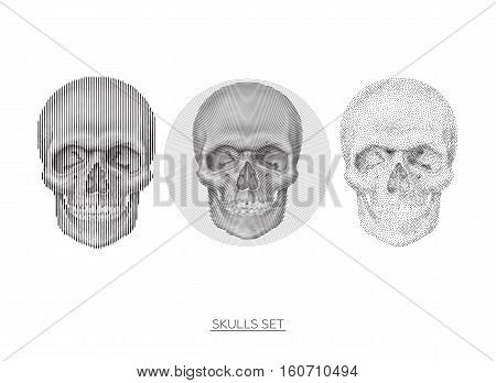 Collection Of geometric anatomical stylized skulls In monochrome. Universal vector skulls set, Illustrations for typography, textile, website, design