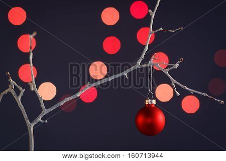 Christmas ornaments hanging on a tree branch.